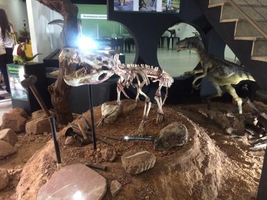 Visita ao Museu de Paleontologia em Monte Alto- Projeto