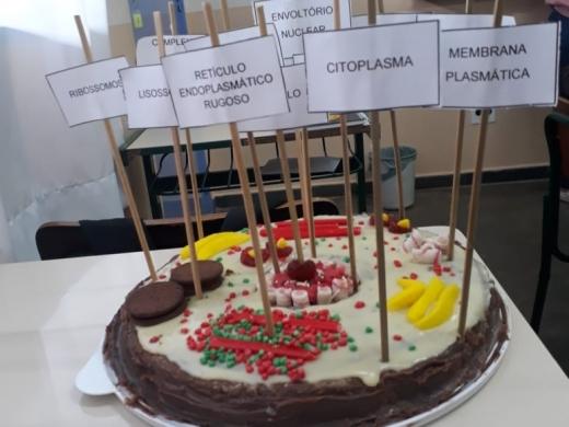 Maquetes de células eucarióticas animais e vegetais