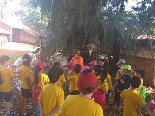 Projeto de Ciências - Visita à Fazenda Vista Alegre